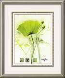 Coquelicot Vert I Prints by  Marthe