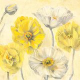 Gold and White Contemporary Poppies II Poster by Carol Rowan
