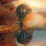 Summer Reflections Prints by Irene Weisz