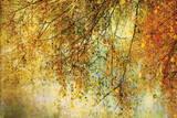 Noche de reyes Lámina por Anne Staub