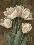 Petit Jardin Tulips Posters par Pamela Gladding
