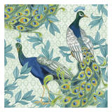 Pretty Peacocks Prints by Nicole Tamarin