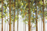 Forest Study I Crop Art by Lisa Audit