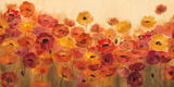 Mohnblumen im Sommer Poster von Silvia Vassileva