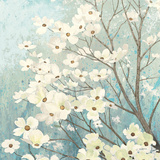 Dogwood Blossoms I Art by James Wiens