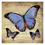 Musical Butterflies 2 Prints by Carole Stevens