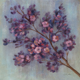 Twilight Cherry Blossoms II Prints by Silvia Vassileva
