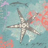 Starfish on Aqua Poster by Wendy MacFarlane