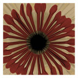 Ox Blood Chrysanthemum Poster by Albert Koetsier