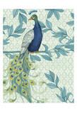 Peacock 3 Prints by Nicole Tamarin