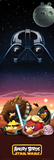 Angry Birds Star Wars Characters Posters