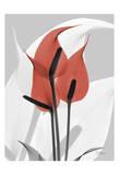 Flamingo Art by Albert Koetsier