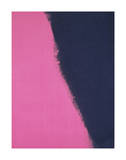 Shadows II, 1979 (pink) Prints by Andy Warhol