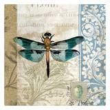 Dragonfly Poster by Elizabeth Jordan