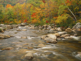 Swift River Flowing Trough Forest in Autumn, White Mountains National Forest, New Hampshire, USA Photographic Print by Adam Jones