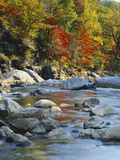 River Flowing Through Forest in Autumn, North Fork, Potomac State Forest, Maryland, USA Photographic Print by Adam Jones