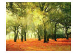 Crimson Forest Floor Prints by Taylor Greene