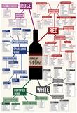 Types of Wine Chart - Afiş