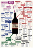 Types of Wine Chart Póster