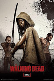The Walking Dead - Michonne Print