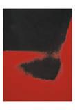 Shadows II, 1979 (red) Giclée-tryk af Andy Warhol