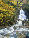 Moss Glen Falls in Autumn, Granvillie, Vermont, USA Photographic Print by Adam Jones