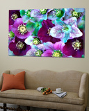 Heliborus Pattern of Winter Blooming Flower, Sammamish, Washington, USA Art
