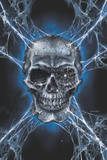 Richard Kelly Spider Skull Print
