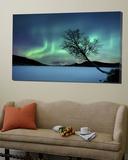 Noorderlicht boven het Sandvannet meer in Noorwegen Poster van Stocktrek Images,