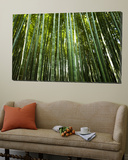 Bamboo Forest, Arashiyama-Sagano District Art by Greg Elms