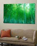Bamboo Forest, Sagano, Kyoto, Japan Plakat