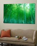 Bamboo Forest, Sagano, Kyoto, Japan Poster