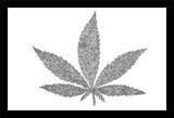 Color Me Weed - Pot Marijuana Posters