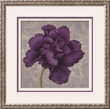 Black Plum 1 Framed Giclee Print by Ariane Martine