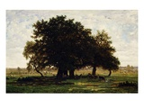 Groupe De Chênes, Apremont (Group of Oak Trees, Apremont, Forest of Fontainebleau, France) Giclee Print by Theodore Rousseau