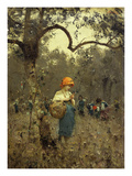Picking Olives Giclee Print by Francesco Paolo Michetti