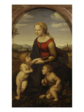 La Belle Jardinière, Virgin and Child with Young John the Baptist, 1507-08 Reproduction procédé giclée par Raphael