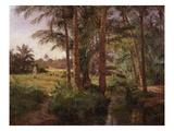 Palm Grove, April 1893 Giclee Print by Emile Isenbart