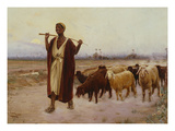 Shepherd and His Flock, 1896 Giclee Print by Alberto Rossi