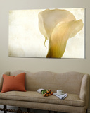 Detail of Calla Lily Posters by Mia Friedrich