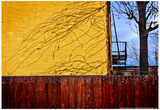 Colorful View in Brooklyn New York Prints