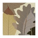 Four Leaves 1 Giclee-trykk av Steven N. Meyers