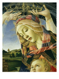 The Madonna of the Magnificat, C.1465 Giclee Print by Sandro Botticelli