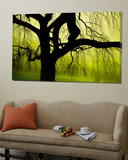 Green and Golden Landscape behind Tree Print by Jan Lakey