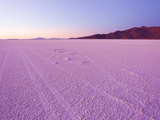 Sunrise Tints the World's Largest Salt Flats Pink Photographic Print by Mike Theiss
