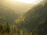 A Mountainous View in the Smoky Mountains Near Sunset Photographic Print by Darlyne A. Murawski
