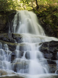 Scenic View of Laurel Falls in the Smoky Mountains Fotografisk tryk af Darlyne A. Murawski