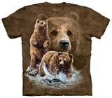 Find 10 Brown Bear T-shirts