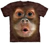Big Face Baby Orangutan Shirts