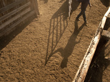 A Man's Shadow Is Visible as He Open a Gate on at a Colorado Ranch Photographic Print by Pete McBride